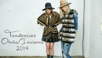 Autumn/Winter Trends 2014